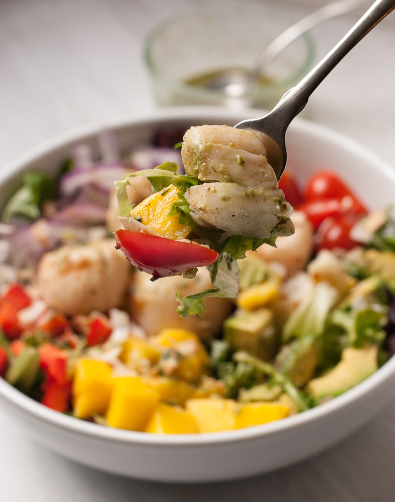 Tropical Scallop Salad with Avocado and Mango and Toasted Coconut PineappleandCoconut.com