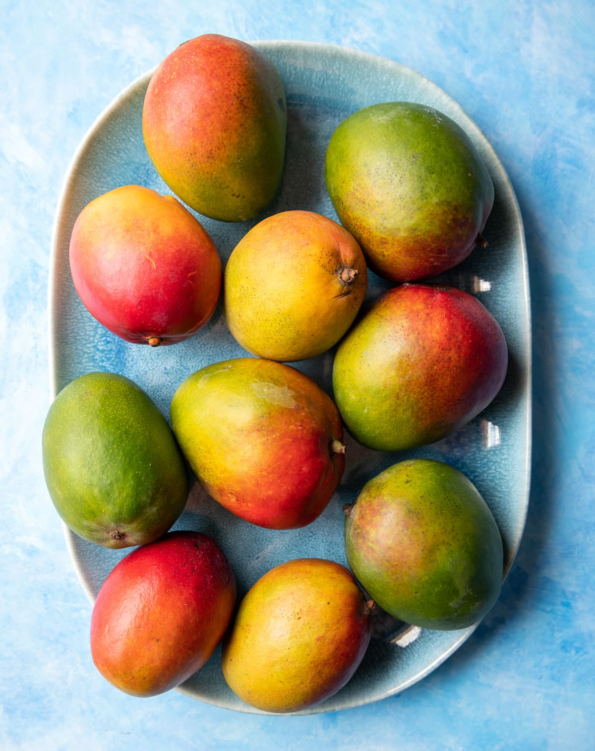 ten whole red yellow and green mangoes on a blue platter